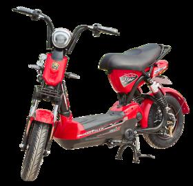 Xe đạp điện 133X9